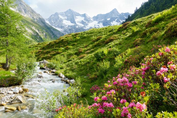 austria-senses (3)